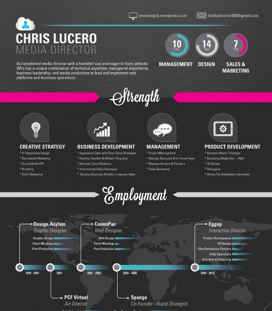 Top 5 Resume Infographics - media resume
