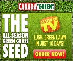 Canada Green Grass All Season