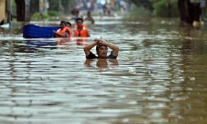 BPBD Kabupaten Limapuluh Kota tengah mendata kerugian akibat banjir yang melanda Kabupaten tersebut. Diperkirakan kerugian akibat banjir di Limapuluh Kota tersebut lebih dari Rp 1 Miliar.