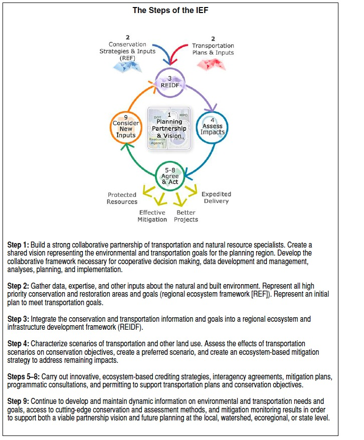 Figure ES.1. Steps of the Integrated Ecological Framework.