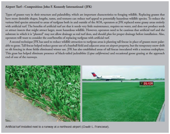 Airport Turf—Composition: John F. Kennedy International (JFK)
