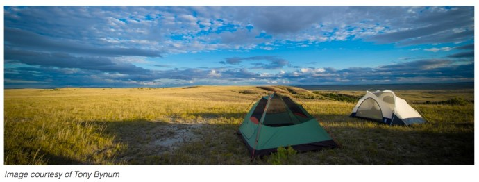 Tent pitched on U.S. public lands