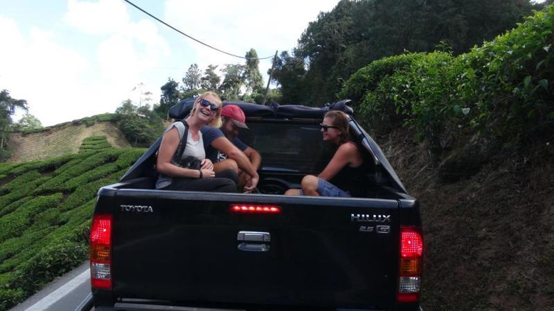 Cameron highlands, malaysia, trekking, hiking, til fods, hitchhiking, blaffe