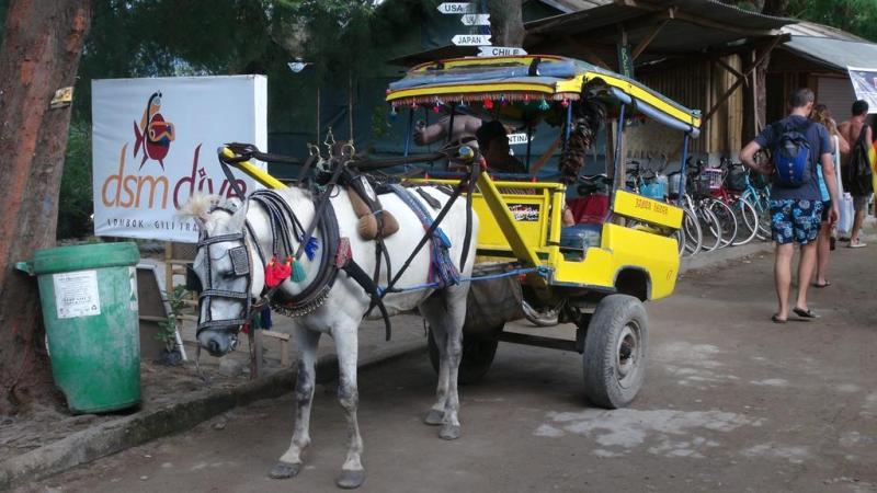 hestevogn, horsecarriage, Gili Trawangan, Gili T, beach, strand, party