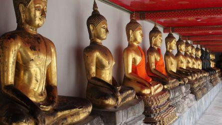 thailand, tempel, budda