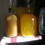 Persimmon Wine brewing