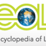 Tools Let Public Contribute To Massive Interactive Online Biodiversity Encyclopedia