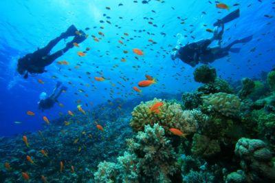 Visita Koh Lipe e il Koh Tarutao National Marine Park con il Tour Operator InnViaggi