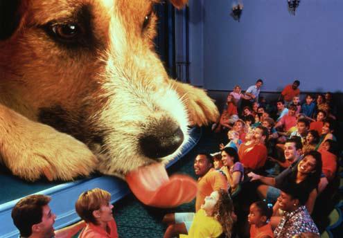 """""""Honey, I Shrunk the Audience"""" © 2011 The Walt Disney Company"""