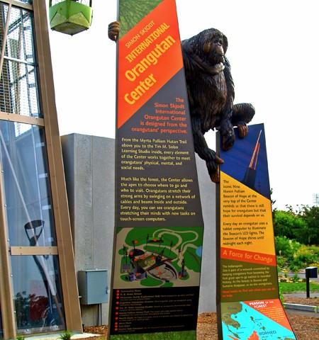 Orangutan5-450-450x480