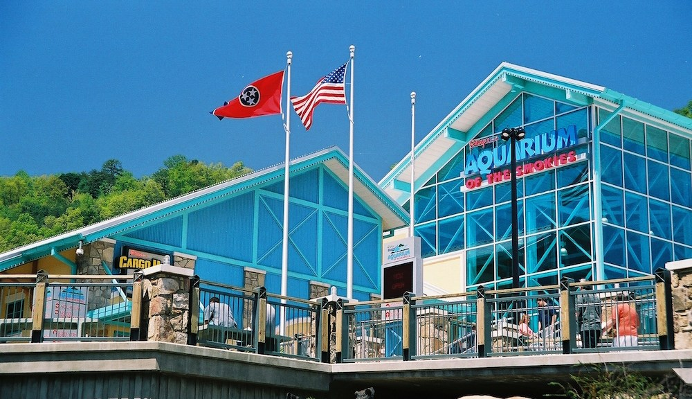 Ripley's Aquarium of the Smokies, one of the top Gatlinburg points of interest.