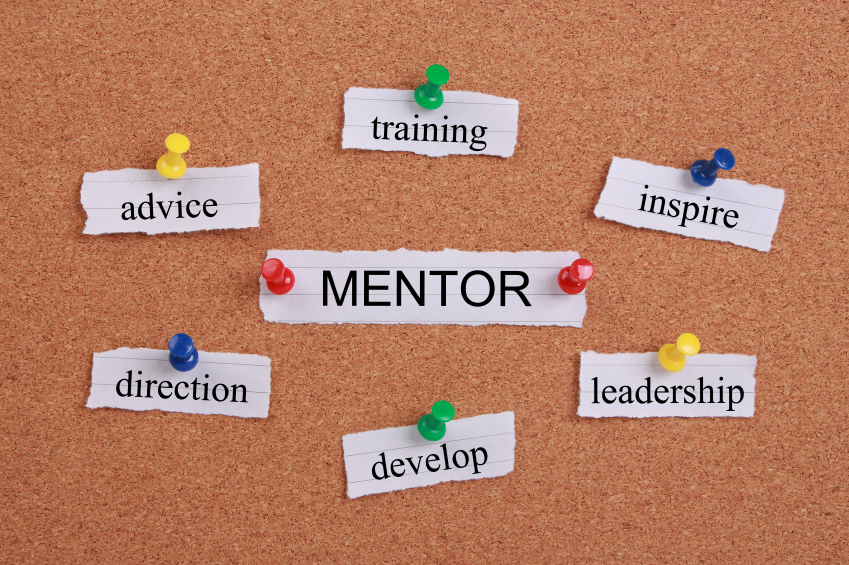 Should you choose a voluntary or paid mentor? (essay) - how to find mentors