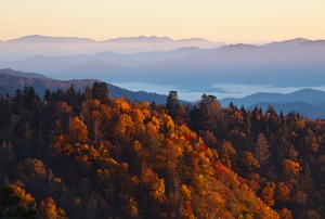 Amazing fall colors in the mountains near Pigeon Forge.