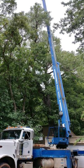 102_crane-service
