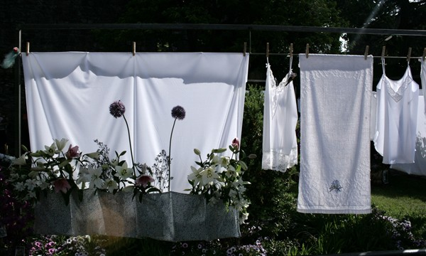 Flower washing line