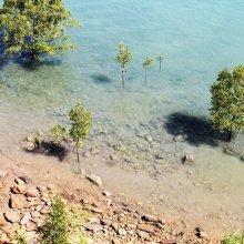 Lamaroo Beach, Darwin