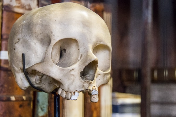 Skull at Marsh's Library via @insidetravellab