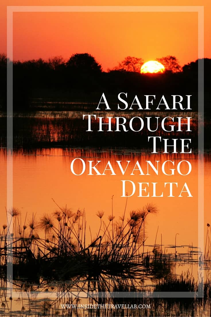 Eight hundred miles from the Atlantic and a thousand from the Indian Ocean, the Okavango Delta looks like a miniature version of the earth from the air.- via @insidetravellab