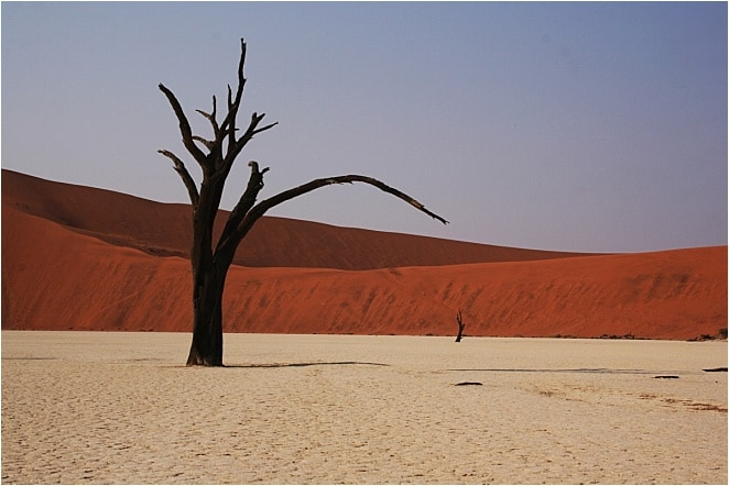 """Depending on who you ask, Sossusvlei means """"Dead Valley"""" or """"The Point of No Return."""" It's a creamy, jigsaw carpet laid down in a valley of scarlet and punctured only by the ghosts of undead trees."""