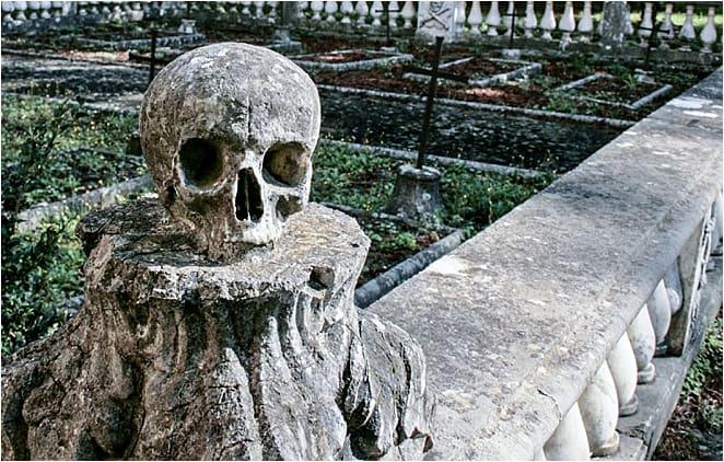 Charterhouse Calci Skull