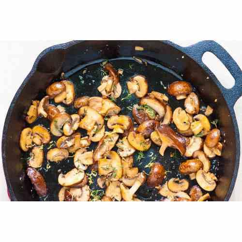 Medium Crop Of Pictures Of Mushrooms