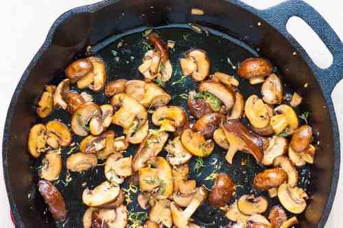 Medium Of Pictures Of Mushrooms