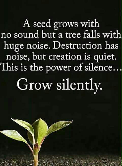 A seed grows with no sound but a tree falls with huge noise
