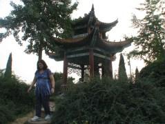 Old Zhengzhou 5-9-13 165