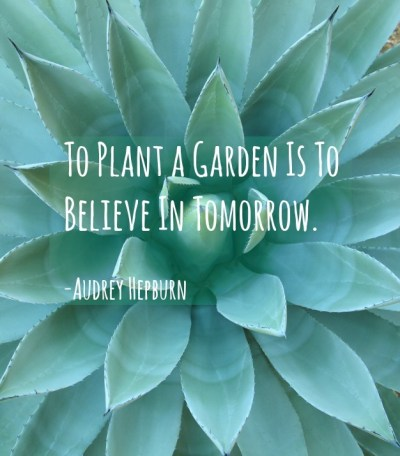 Garden Quotes: Best Gardening Quotes by Famous People   INSTALL-IT-DIRECT