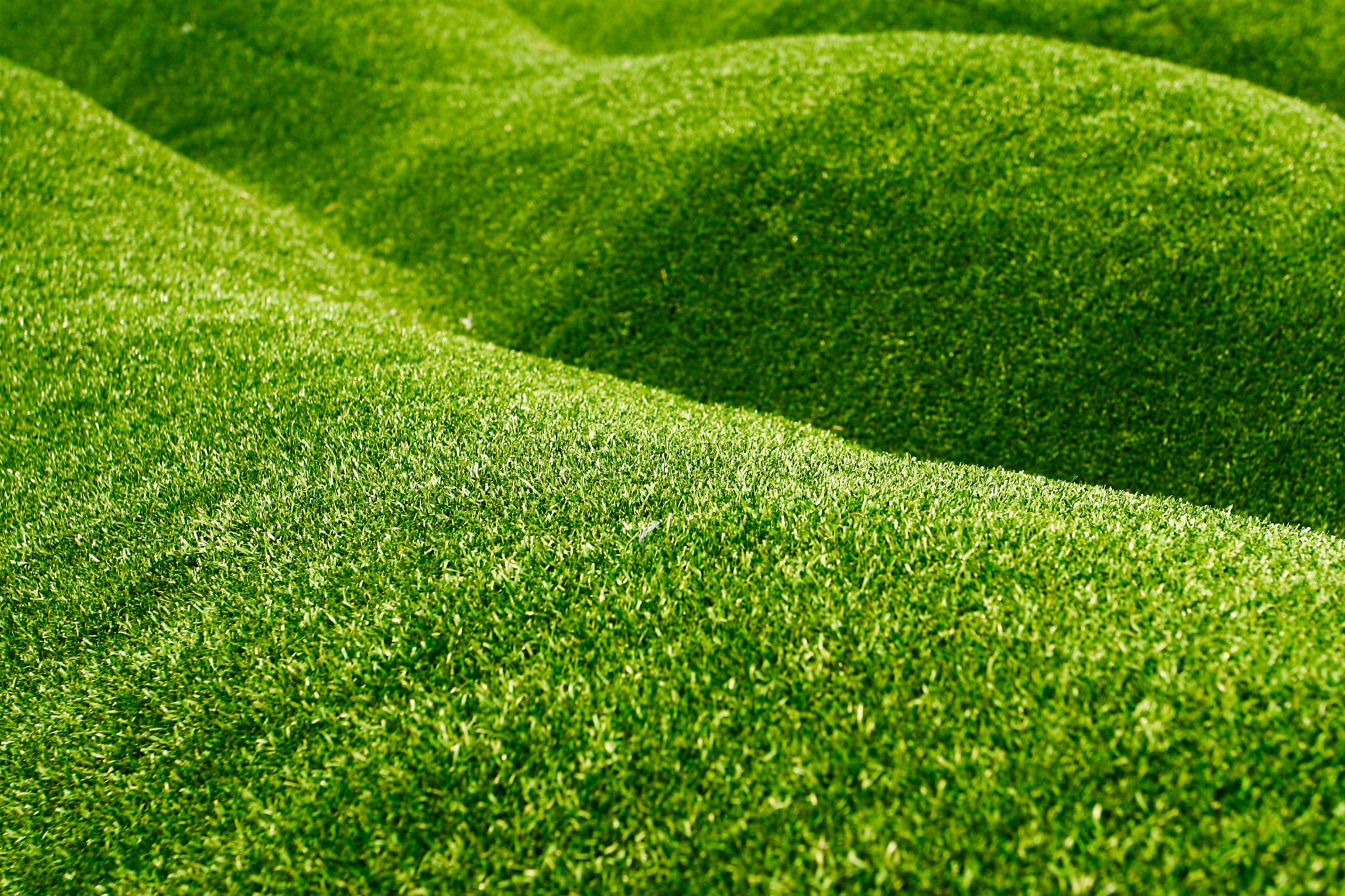 Slope Grass Wwwtopsimagescom