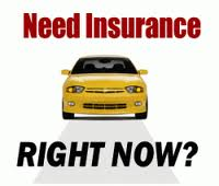 Auto Insurance Quotes  InsureDirect.com Image