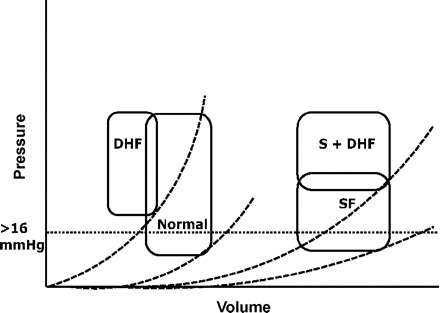 Evaluation of Left Ventricular Diastolic Function by