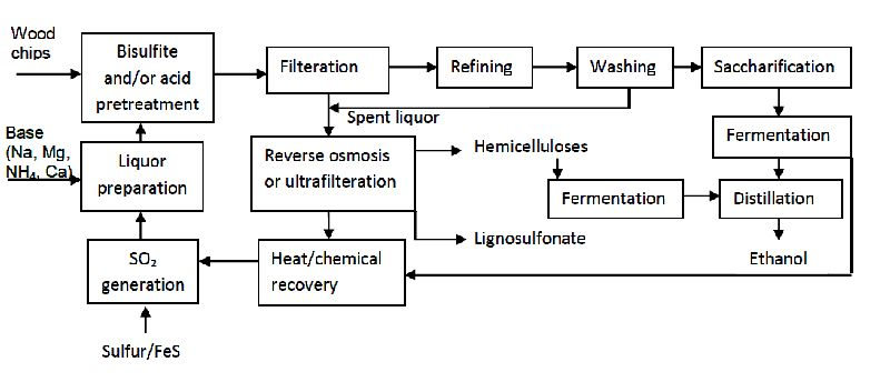 Production of Biofuels from Cellulose of Woody Biomass IntechOpen