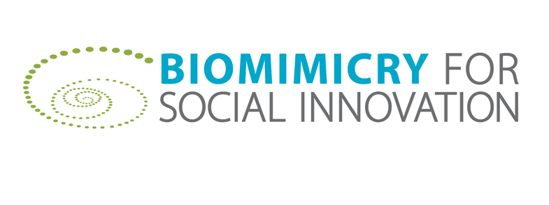The Biomimicry for Social Innovation website is now live and features a blog post I wrote about my inspiring experiences in their immersion workshop.