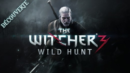 [D] The Witcher 3