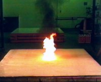 interFIRE, A site dedicated to improving fire ...