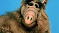 ALF is bringing his cat appetite back to Earth with reboot of classic 80s sitcom