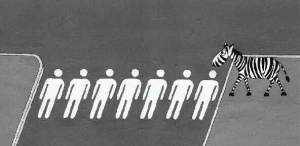 Human Crossing For Zibra