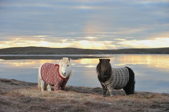 scotland-landscape-photography-26.jpg