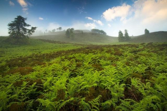 scotland-landscape-photography-18.jpg