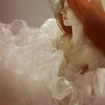 Best_underwater_pictures (12)