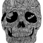 Skull_Illustrations_by_Sam_Sephton  (3)