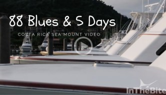 Video: Costa Rica 88 Blues In 5 Days
