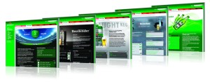 Heineken brand portal sections