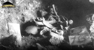 كومة عظام مُجردة من اللحم - مغارة بمنطقة تنس