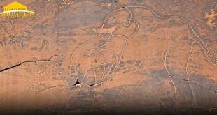 L'éléphante protégeant son éléphanteau , la gravure d'El Ghicha