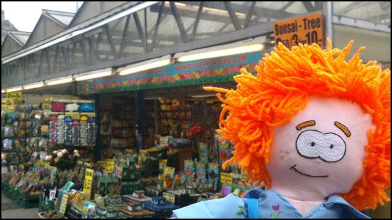 Little Stu Amsterdam Flower Market