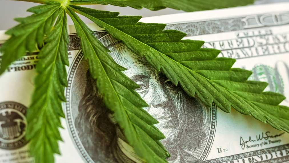 Marijuana Stocks To Buy And Watch Track The Leading Cannabis Stocks