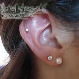 Cartilage Piercings Various INVSELF05
