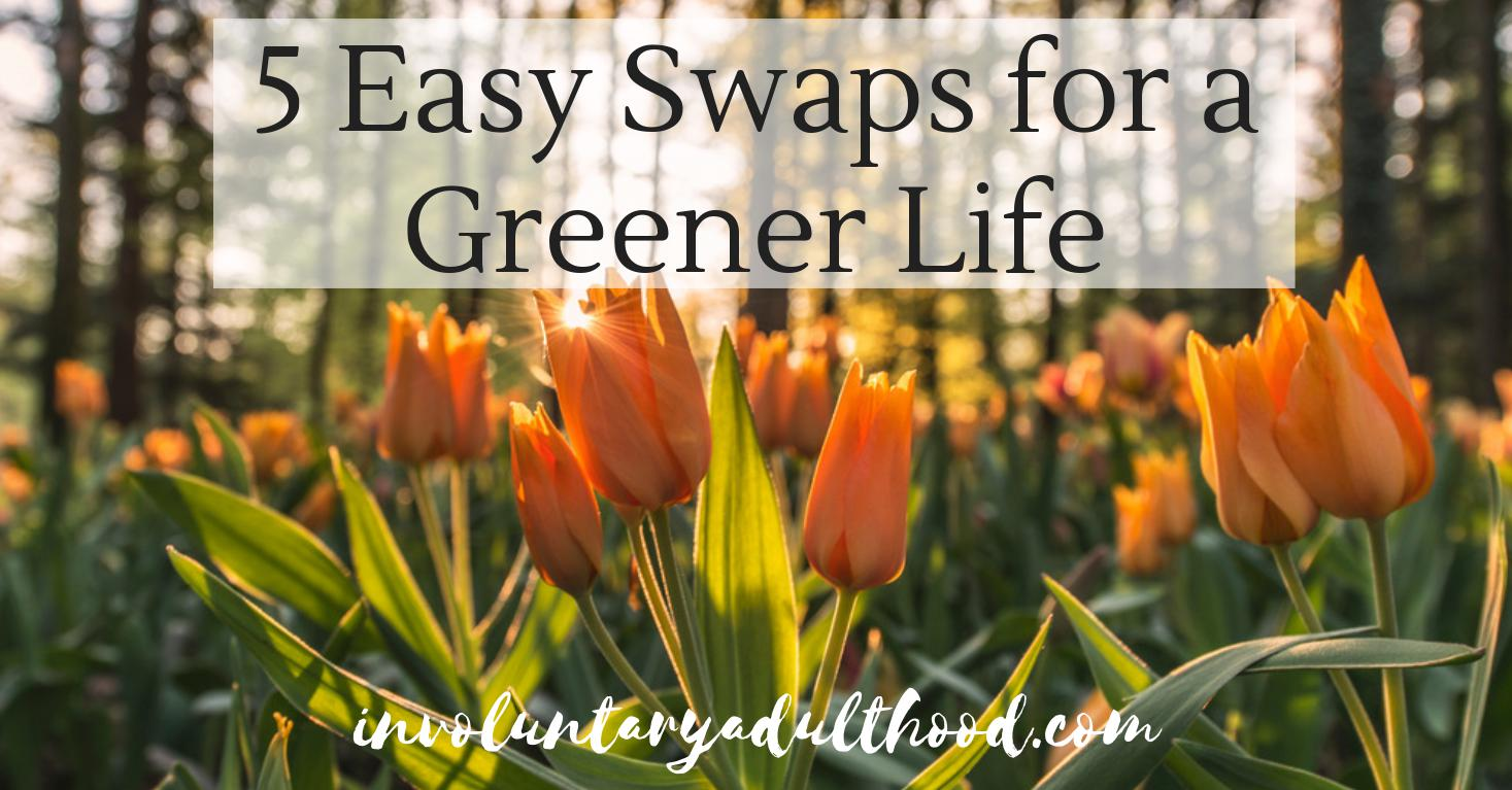5 Easy Swaps for a Greener Life